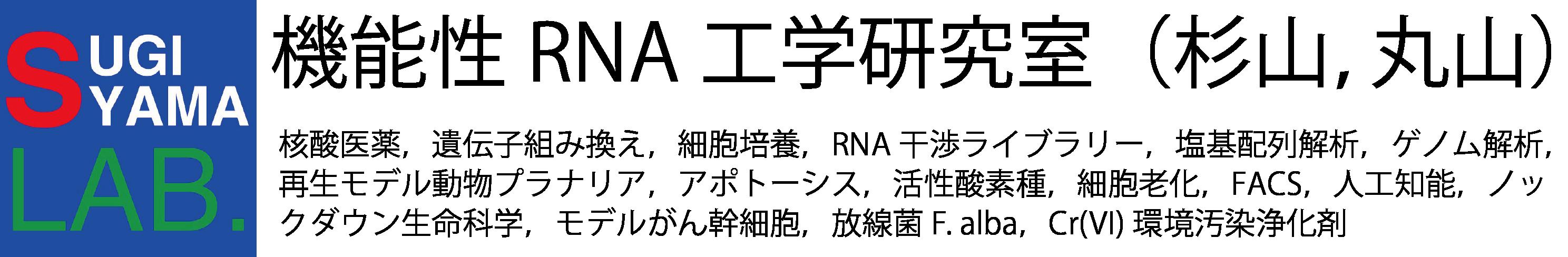 機能性RNA工学研究室(杉山・丸山)